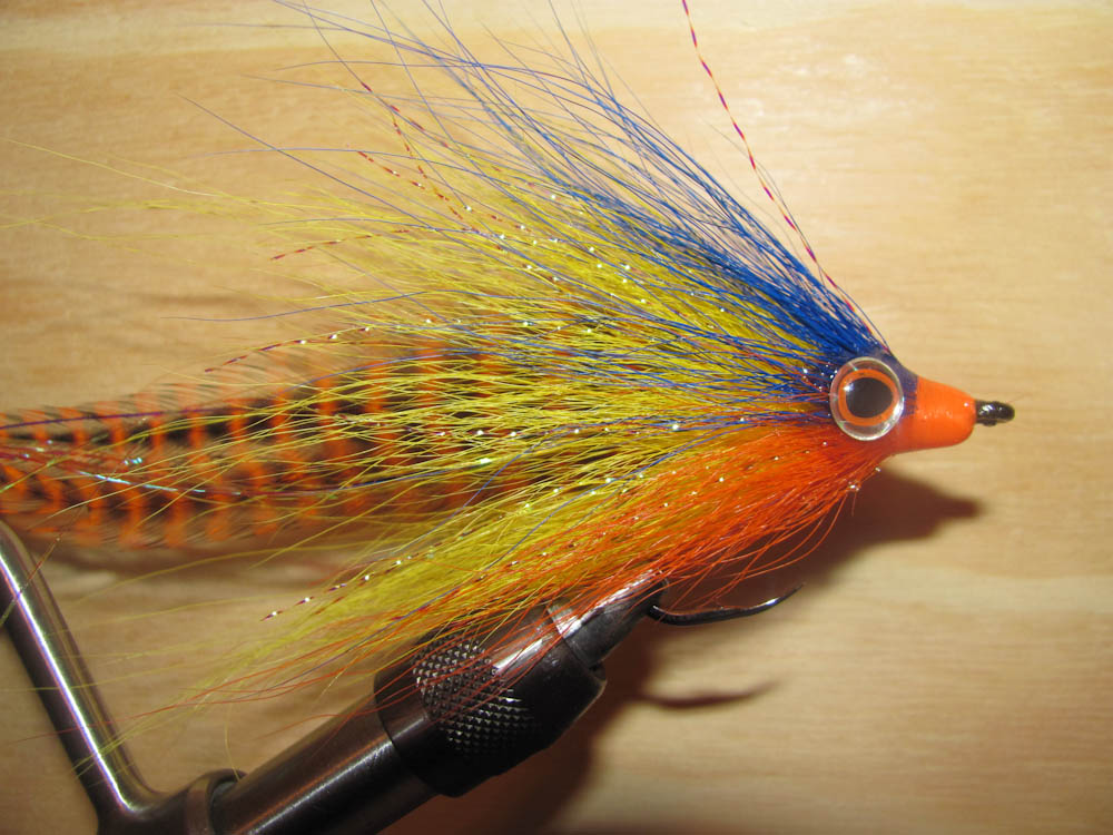 Peacock bass fly fishing for Bass fly fishing