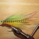 Peacock Bass Flies